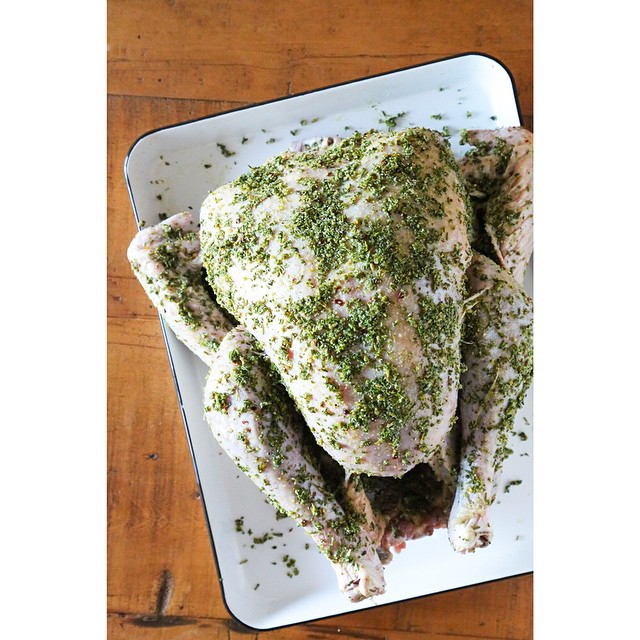 Rub that dry brine all over the turkey up to 24 hours in advance, and chill in the refrigerator. This brine is good for chicken too!