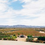 Finca La Carrodilla Vineyards