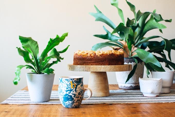 Nectarine Coffee Cake Recipe