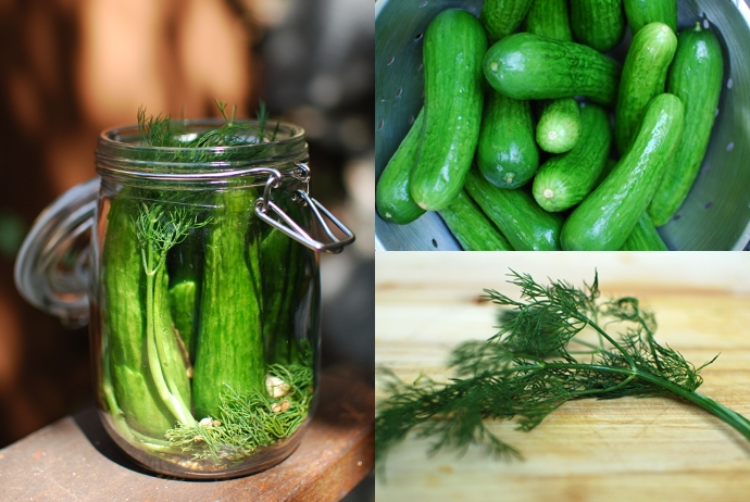 Dill Pickles Recipe — Dishmaps