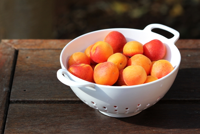 Baby Apricots