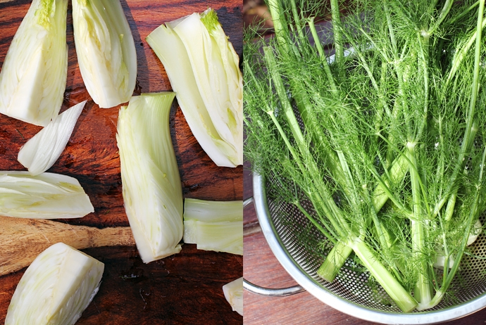 Quarted Fennel and Fennel Fronds