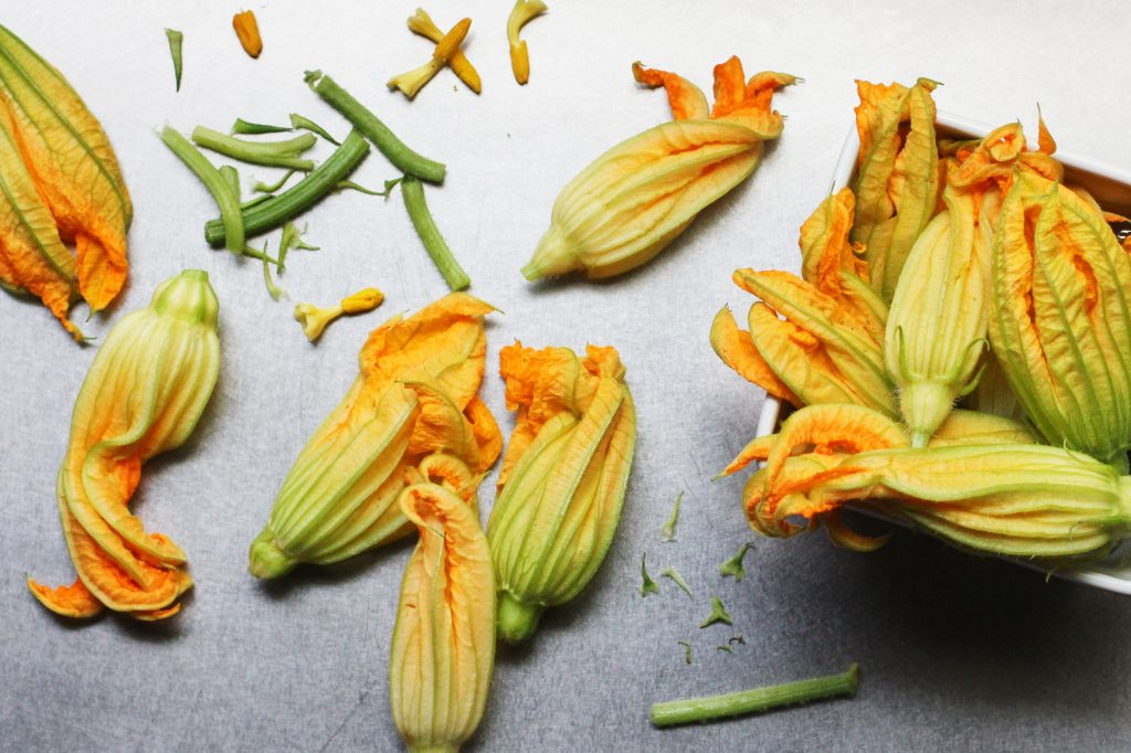 Preparing Squash Blossoms