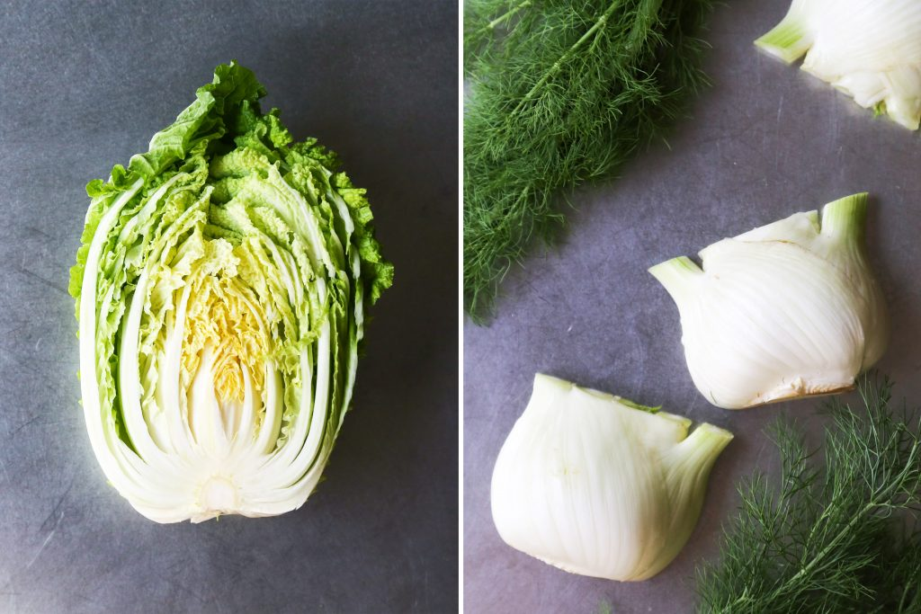 Fennel and Cabbage