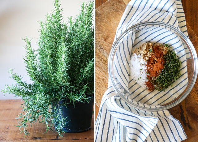 Rosemary and Spices