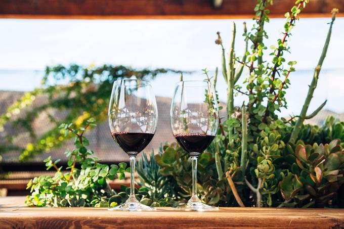 Finca La Carrodilla Wine Tasting