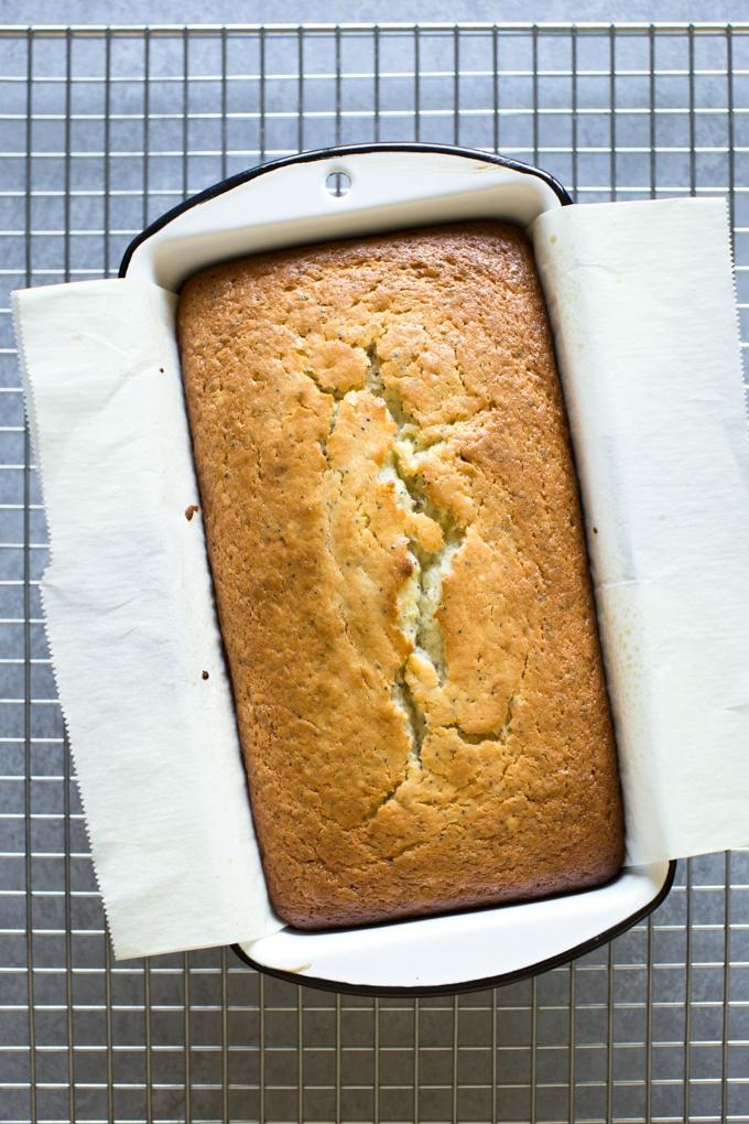 Citrus Poppy Seed Cake Baked