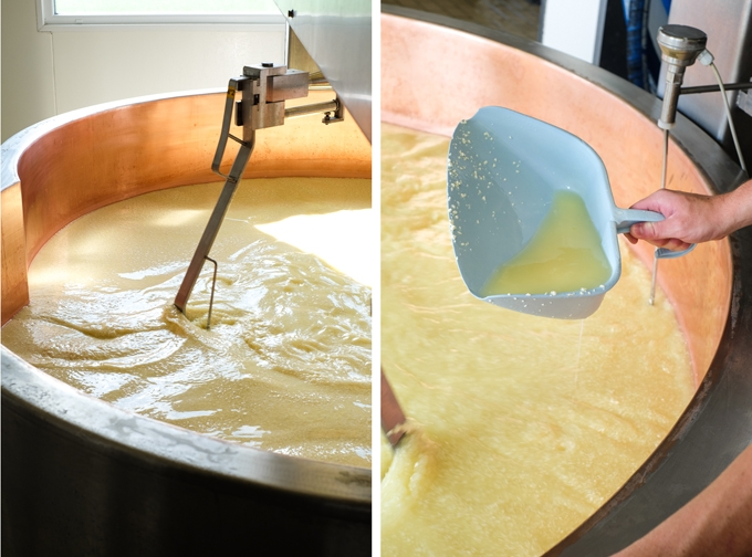 Cheesemaking Process
