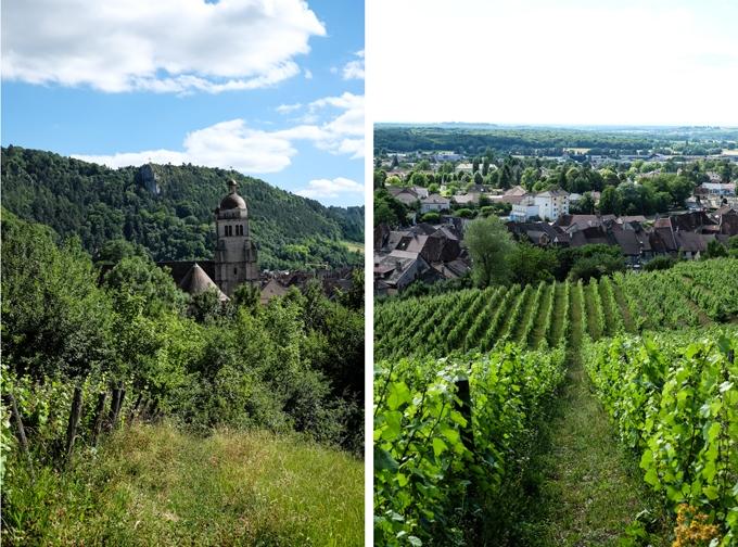 Poligny Vineyards