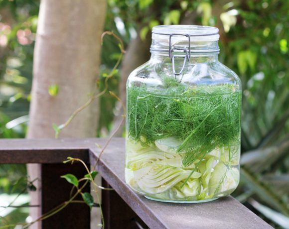 Fennel Infused Vodka