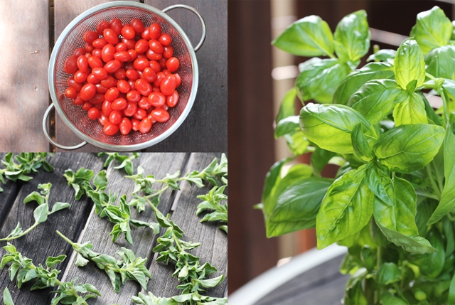 Cherry Tomatoes, Oregano and Basil