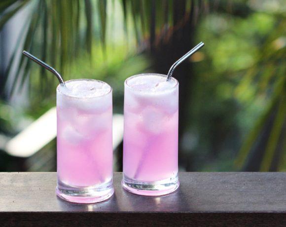 Pink Dragon Fruit Soda
