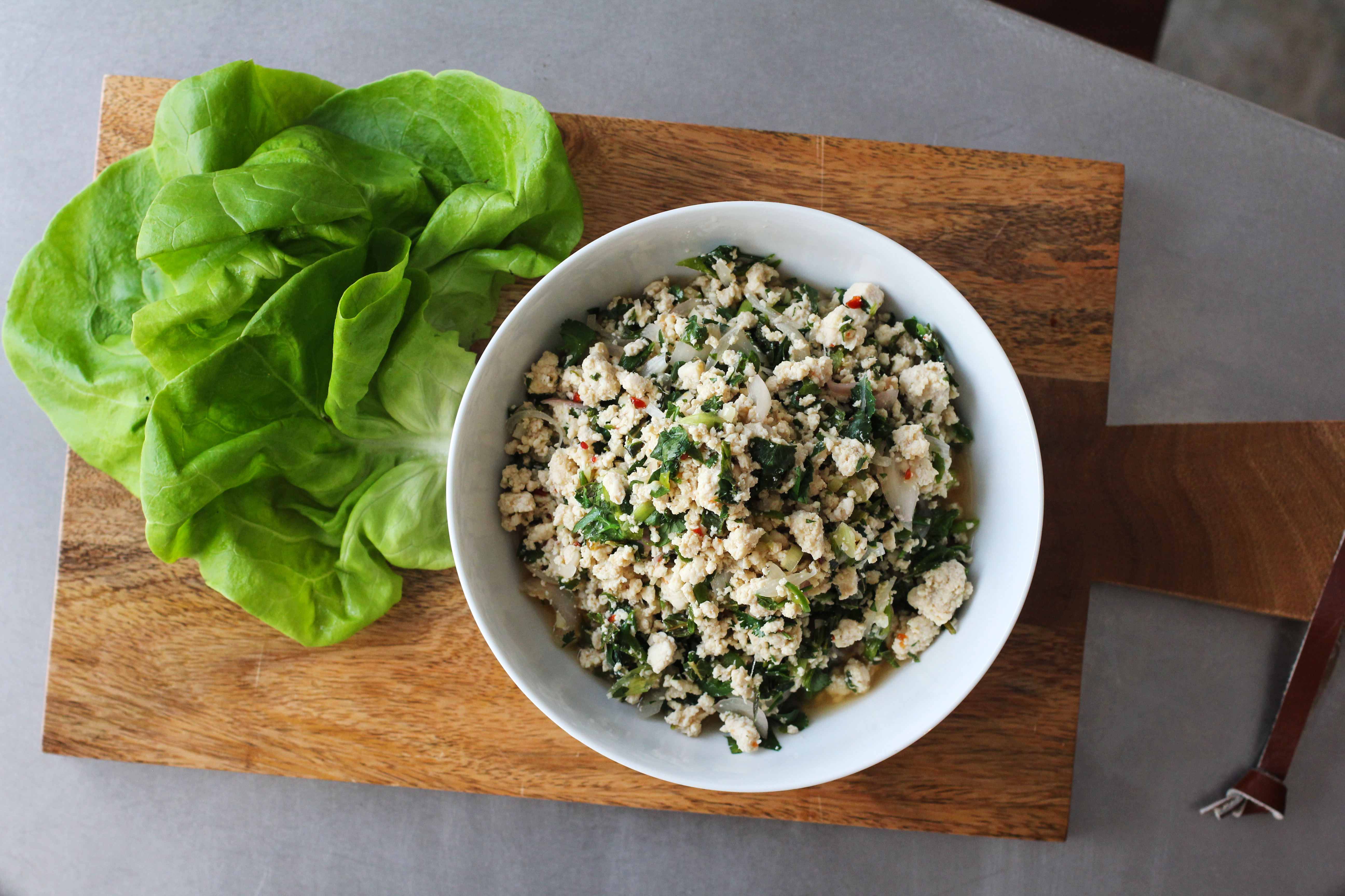 How to grind meat in a food processor chicken larb forumfinder Gallery