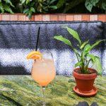 Plumosa Cocktail