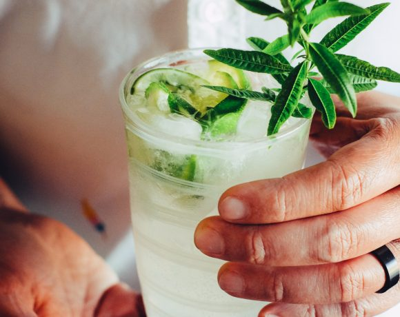 Lemon Verbena Gin and Tonic Recipe