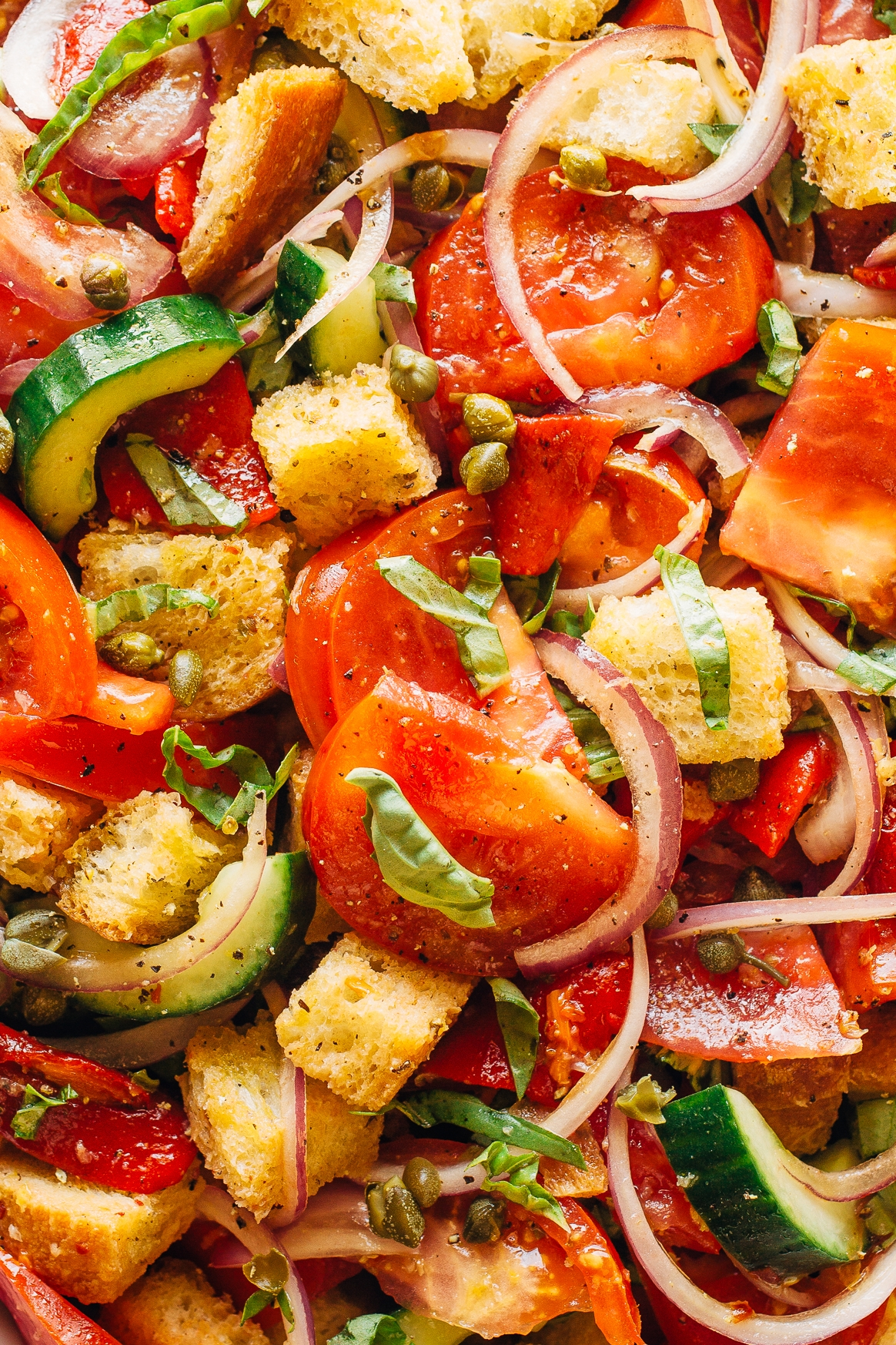 Panzanella Salad Zoomed In